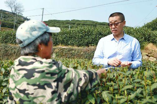 吴裕泰董事长赵书新(右1)与翁家山茶农询问茶树生长情况