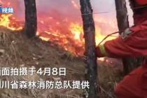 四川冕宁县森林火灾:偏激面积达19公顷