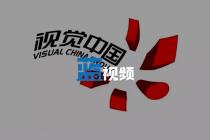 被共青团中心硬怼的视觉中国:客岁前三季度靠版权赚了超5亿