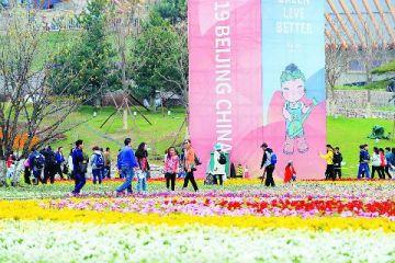 静候全球宾客 北京进入世园时间