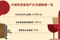 沙城产区:京城近邻的高端葡萄酒图谋