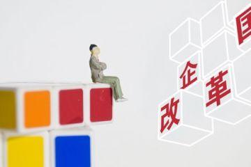 郝鹏一肩挑 国企改革引猜想