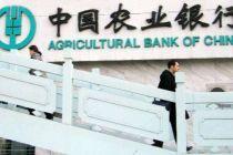 农行准备第二批地方债柜台发行