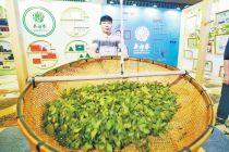 迎合消費升級 吳裕泰布局有機茶市場