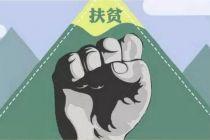 央行劉國強:抓好定點扶貧自查自糾整改落實
