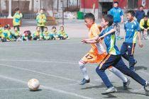 青少儿体育培训机构进校掘金