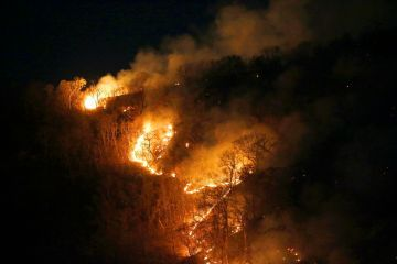 火烧亚马逊20天,巴西总统终于出手要灭火