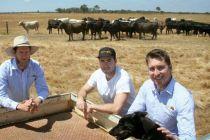 借助社交媒体 澳洲牛肉直销中国