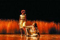阿科斯塔舞团演绎现代舞《美景·一瞬·夜》