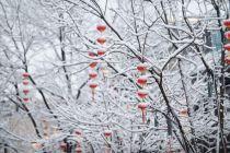 2020年首场大雪考问北京商业