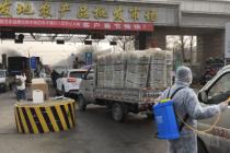 """大年初四探访新发地:北京白菜回归""""白菜价""""(有视频)"""