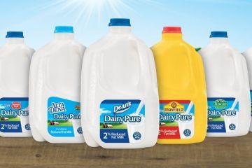 4.25億美元 美國奶農接盤破產迪恩