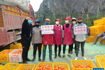 产地直采包邮抵家 永辉超市开辟帮农新通道