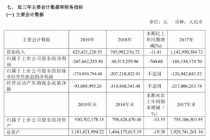 斷崖式虧損  海南椰島2019年凈利下降760.68%