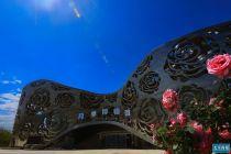 游客须提前一天实名预约 7万株月季绽放世界月季主题园
