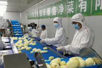 垃圾减量36计:北京推净菜上市 新发地年减少垃圾总量20%