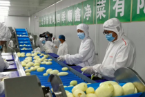 大发3d|年减20%厨余  新发地蔬菜上市先削皮