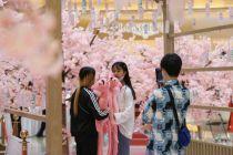 消费回补 新供给激活北京潜在消费