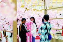 消費回補 新供給激活北京潛在消費