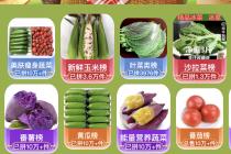 縮短蔬菜進城時間  壽光蔬菜館上線拼多多