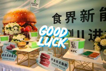 百胜中国植物肉大发3d将于6月3日开始第二轮公测 扩围至4城5店