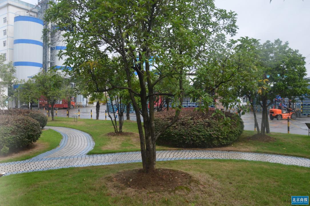 华润雪花绿色厂区
