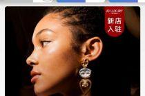 """法国珠宝PHILIPPE FERRANDIS京东开官方店   同平台为何有两家""""旗舰店""""?"""