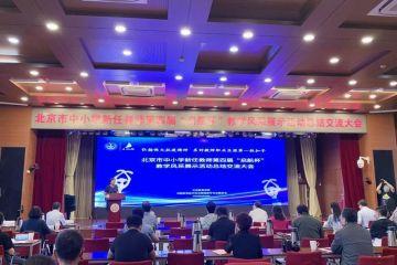 提升新任教师教学能力 北京市中小学积极探索教育信息化进程