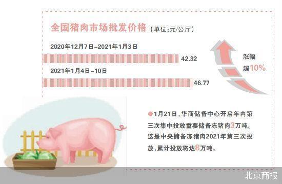 """养殖户变""""风控家"""" 眼下国内生猪产能亟待恢复"""