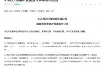 """立案调查后遗症凸显 深圳堂堂遭ST网力""""分手"""""""
