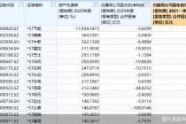 17天15板!这只股票资产负债率却高达17834.55% 还有31股已资不抵债