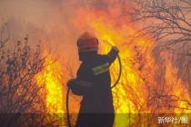 希腊首都北部发生山火致数千人撤离